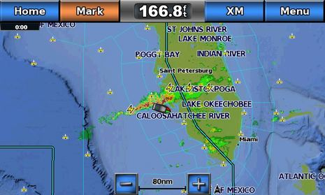 Garmin_GDL_weather_lightning_plus.jpg