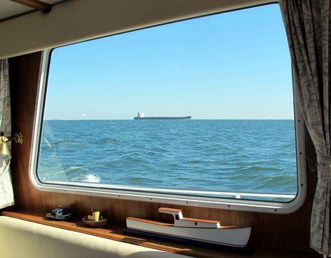 Gizmo_Chesapeake_10-2012_cPanbo.jpg