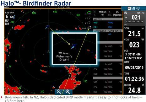 Simrad_Halo_birdfinder_aPanbo.jpg