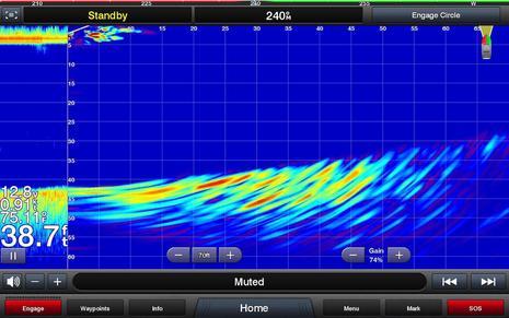 Garmin Panoptix PS21 LiveVu Screenshot